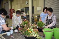 四季折々の植物で季節感あふれる家に