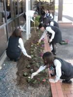 花の定植 各支店の美化につとめています!