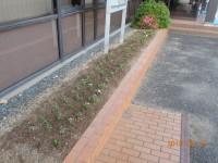 花壇の植栽で支店前を華やかに!
