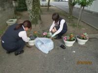 色鮮やかなお花がお客様をお出迎え。(加西支店・小野南支店)